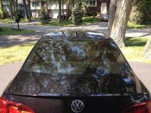VW Jetta - Rear Window